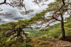 Buntsandsteinhöhenweg