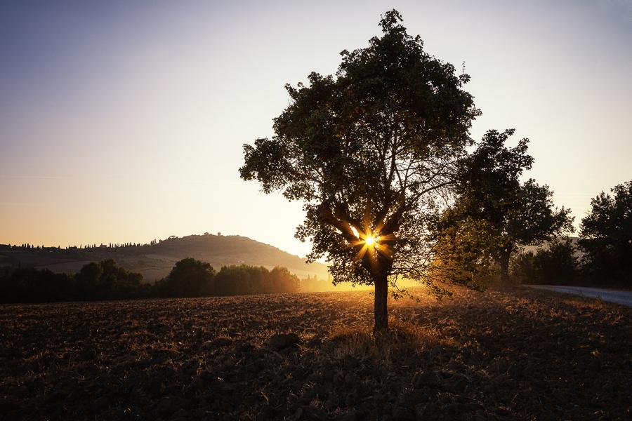Buongiorno Toscana