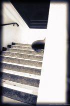 Bured Stairs