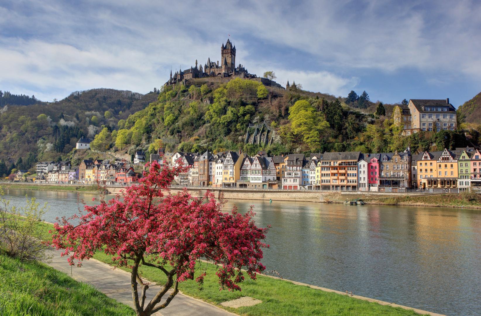 Burg Cochem im Frühling