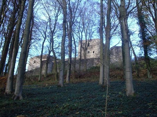 Burg durch den Wald fotografiert