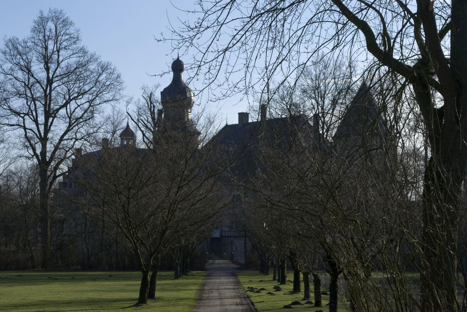 Burg Gemen vom Sternbusch aus gesehen
