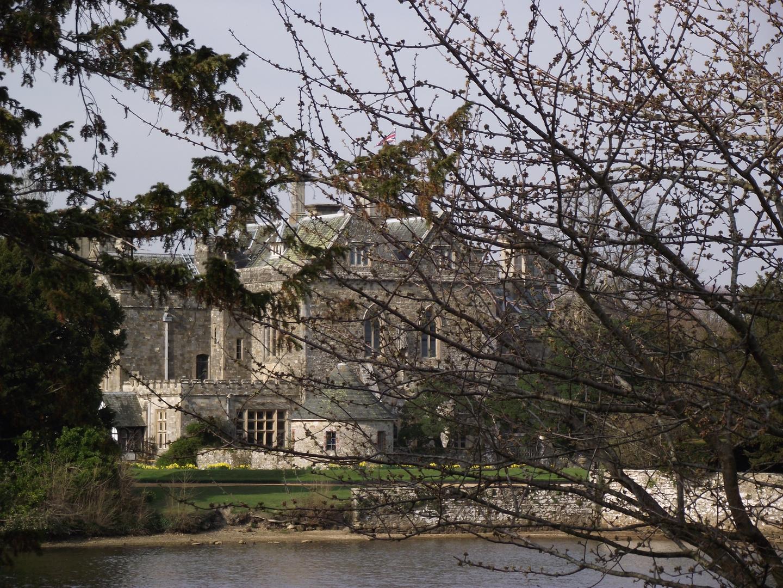 Burg im New Forest