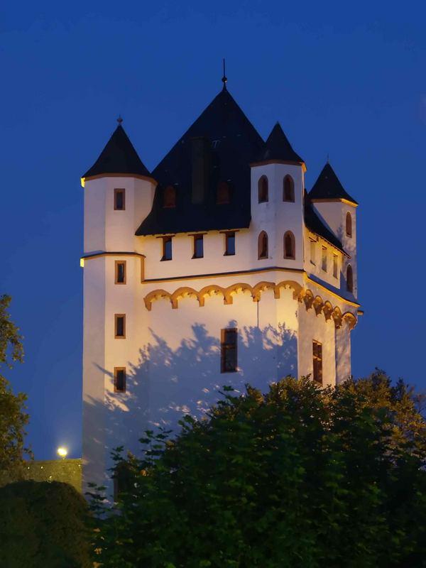 Burg in Eltville am Rhein