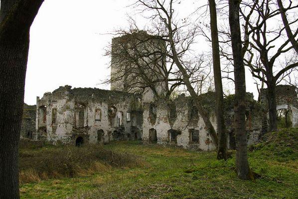 Burg Langenstein