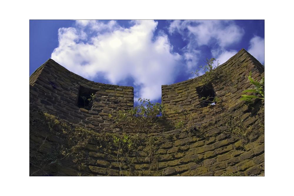 - Burg Linn -