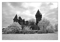 Burg Linn im Gegenlicht