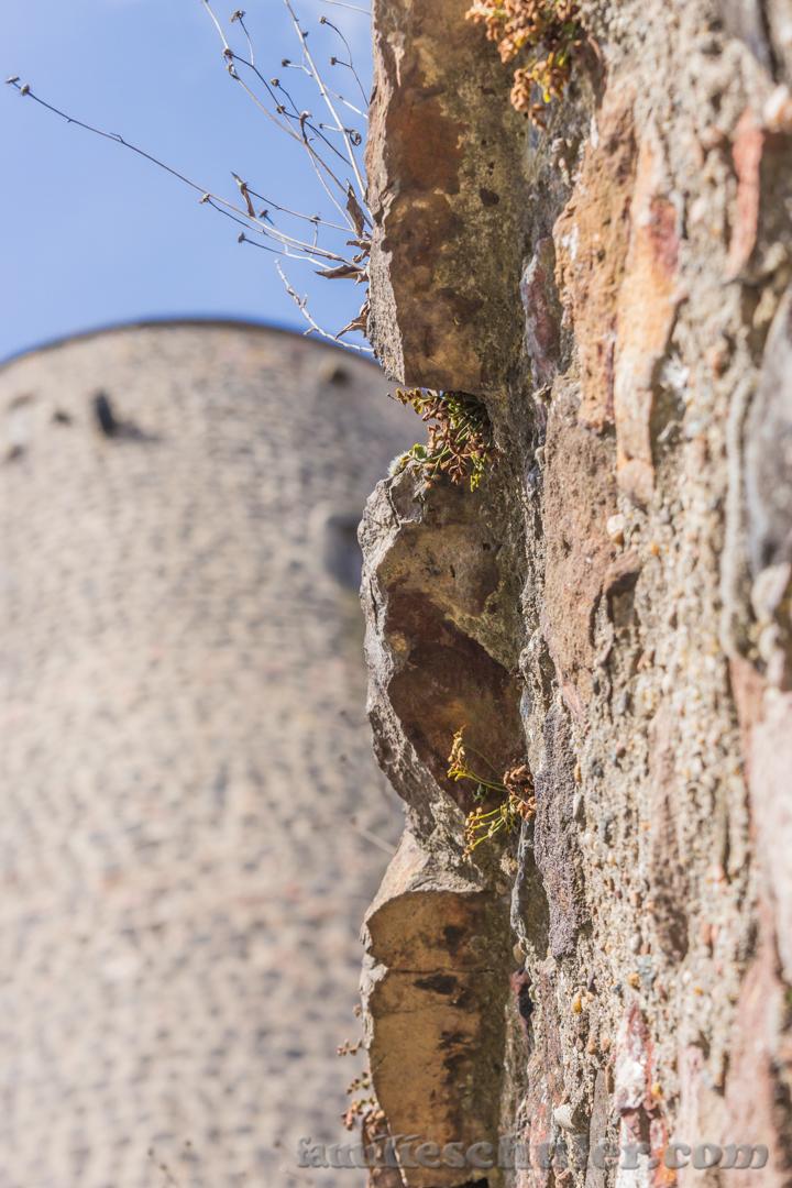 Burg Münzenberg 3