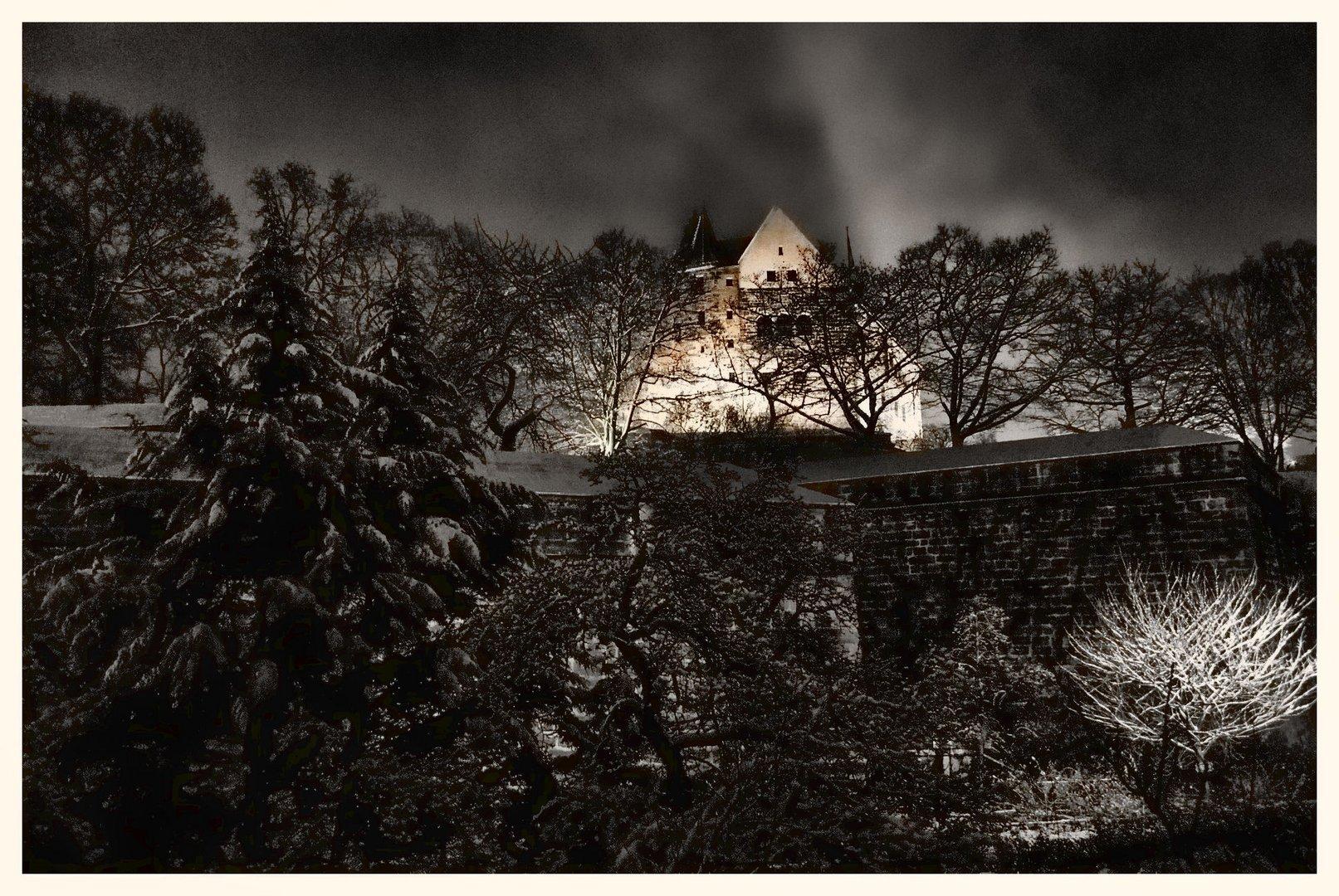 Burg Nürnberg 11.12.2008