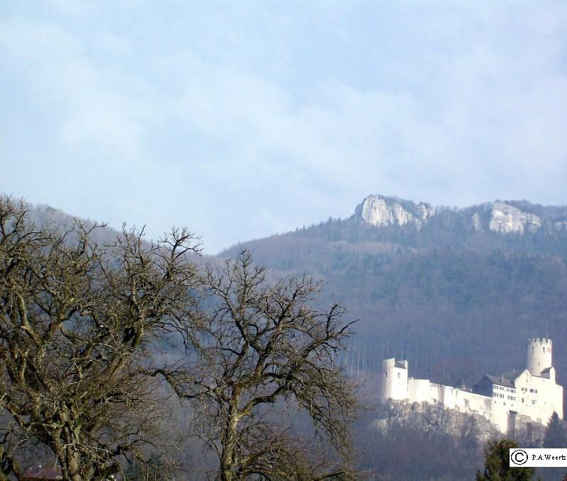 Burg Oensingen im leichten Nebel