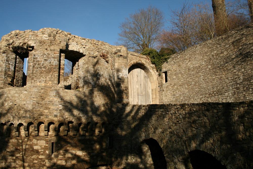Burg Olbrück1