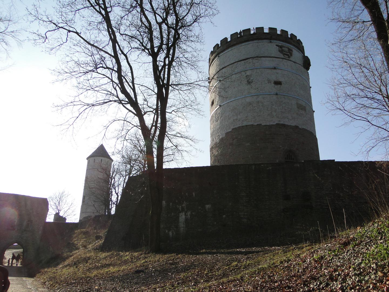 Burg Plesse II