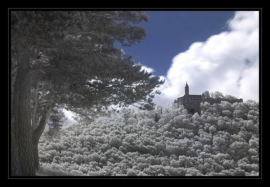 Burg Teck in IR