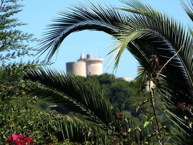 Burg zwischen Palmen