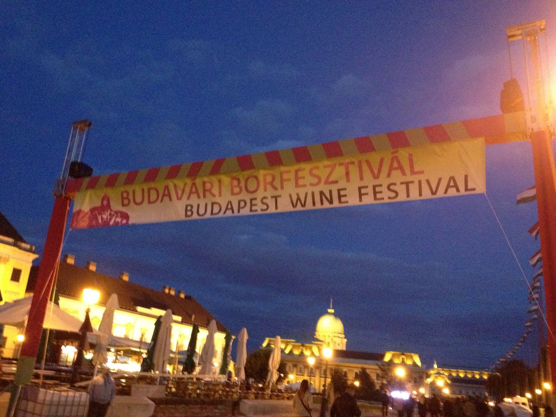 Burgfestival / Weinfestival 2013