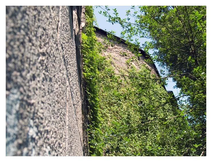 Burgmauer in grün