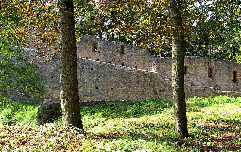 Burgmauern im Wald......