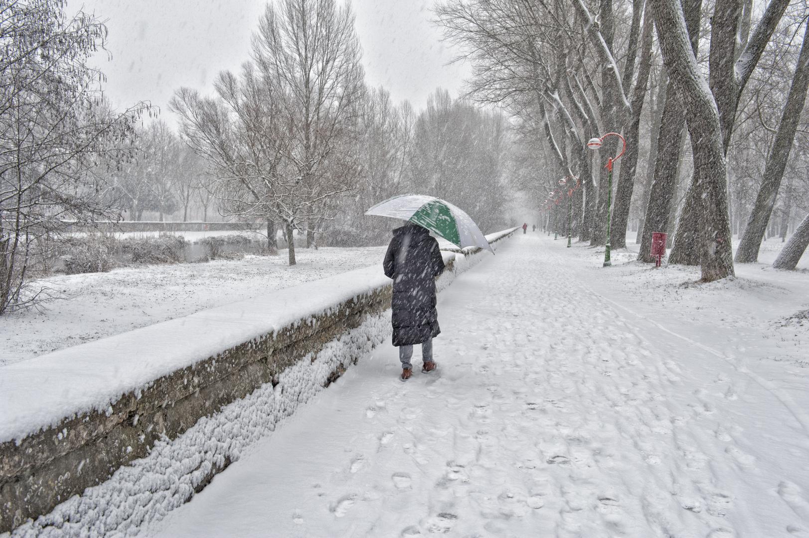 Burgos no te dejara frio
