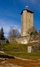 Burgruine Altnußberg (2)