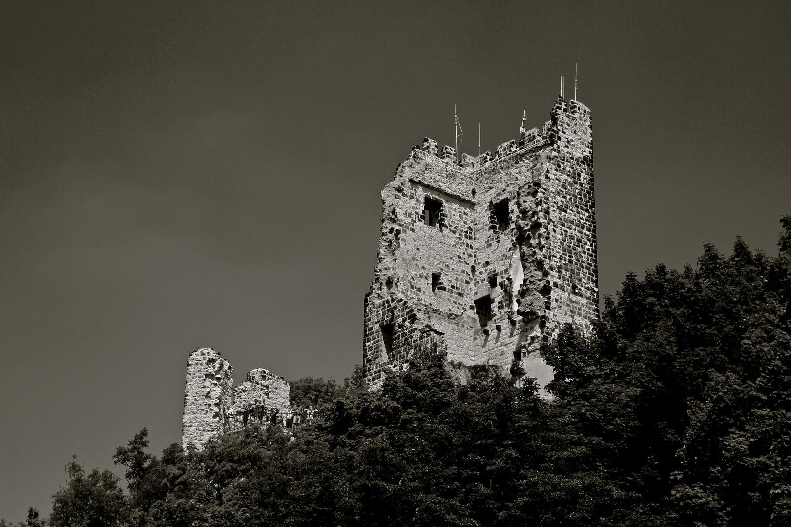 Burgruine Drachenfels