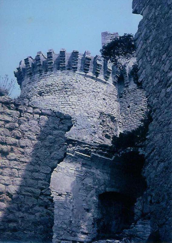 Burgruine in Boulbon (Teilansicht)