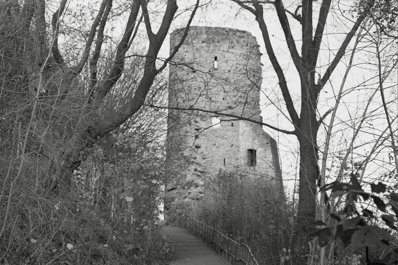 Burgruine Volmarstein im November