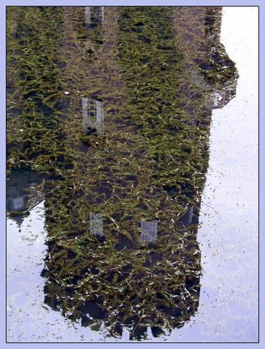Burgturm im Burggraben