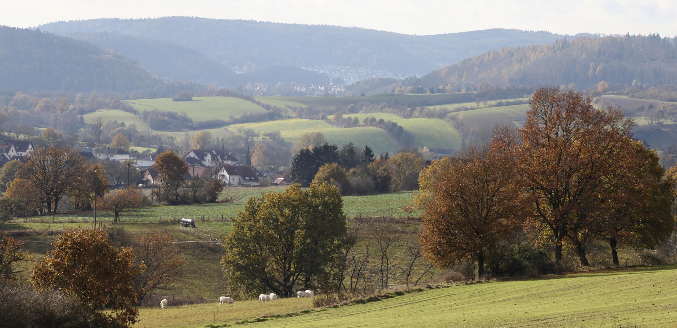 Burgwald - Hessen (Rauschenberg?)