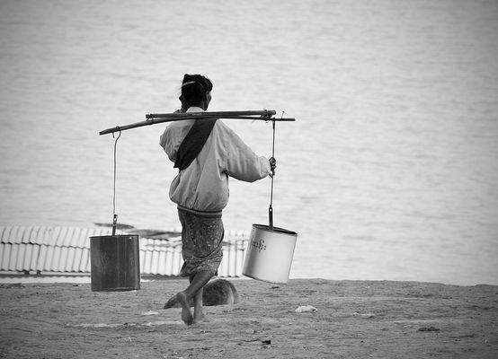 Burmesin #2