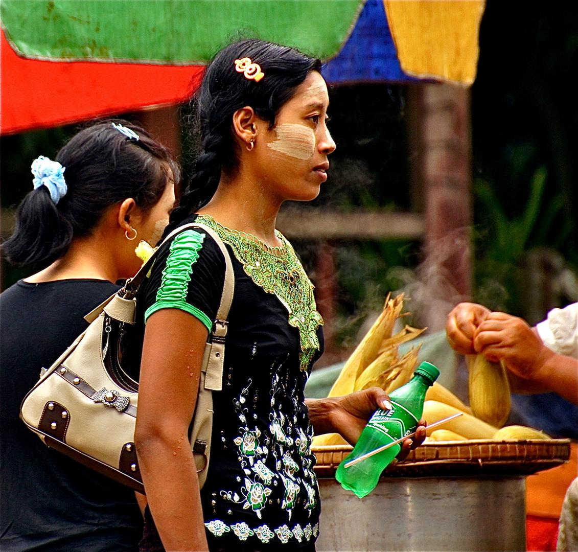 burmesisches sprite und ein maiskolben