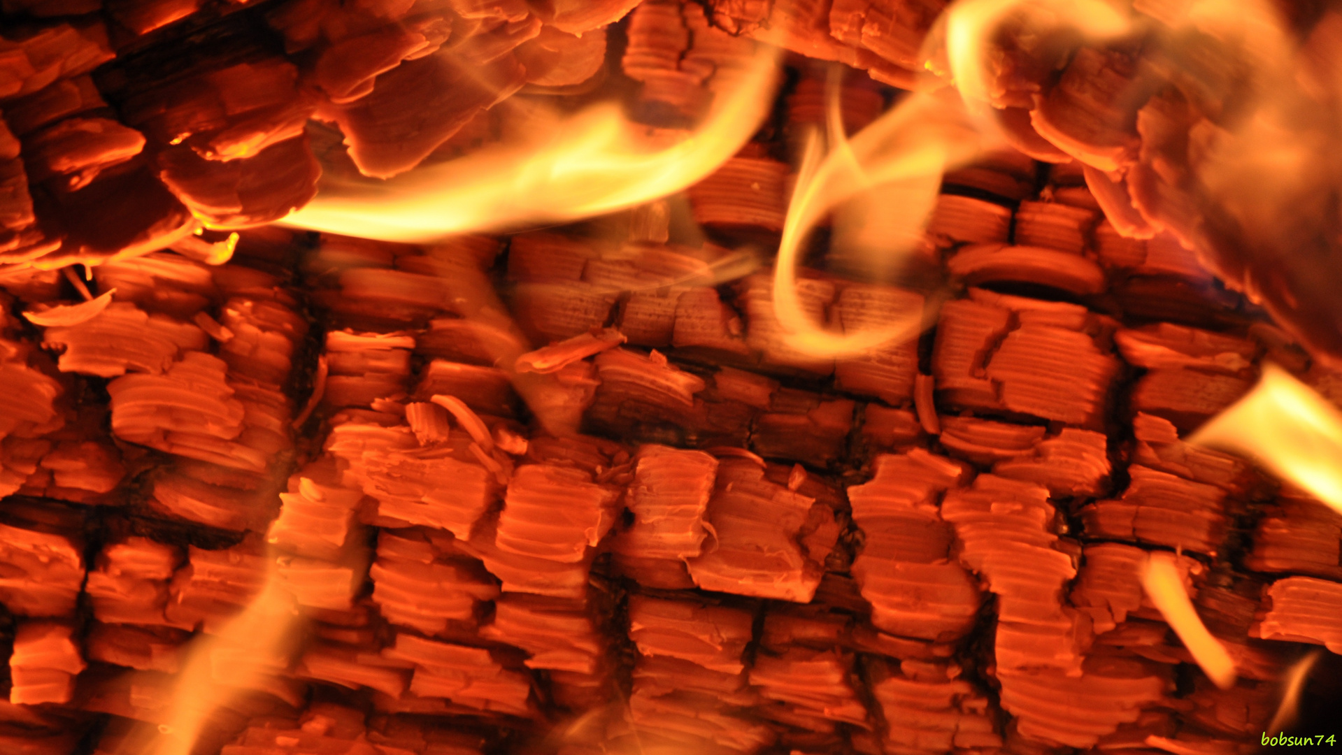 burn fire burn