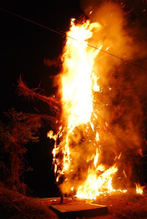 Burn the evil