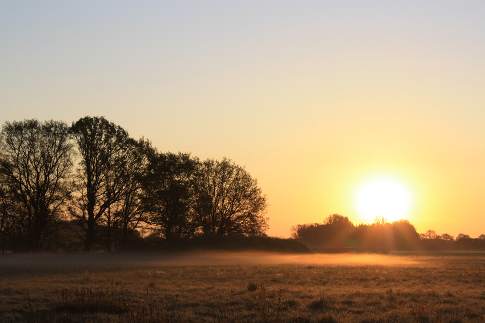 burnin morning