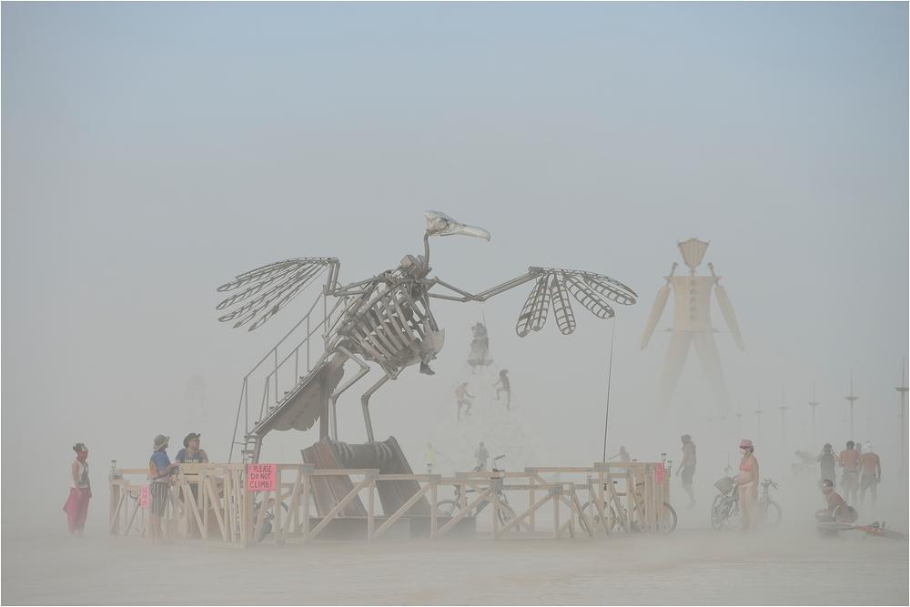 Burning Man - Bird?