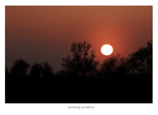 **burning sundown**