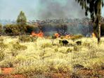 Buschbrand am Uluru