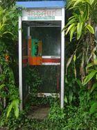 Buschtelefon