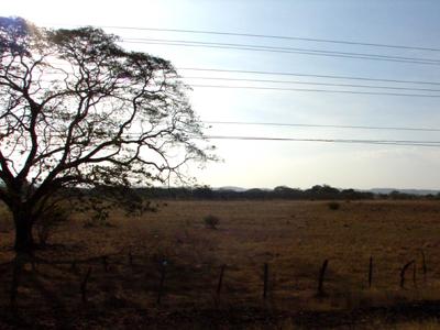 Busfahrt durch die trockenste Region Costa Ricas