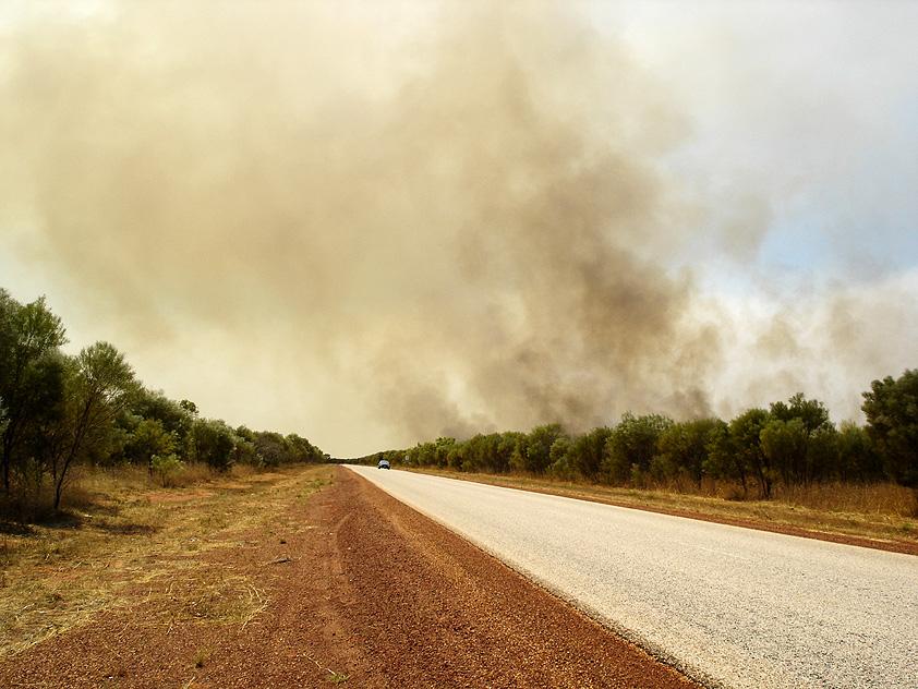 Bush fire II