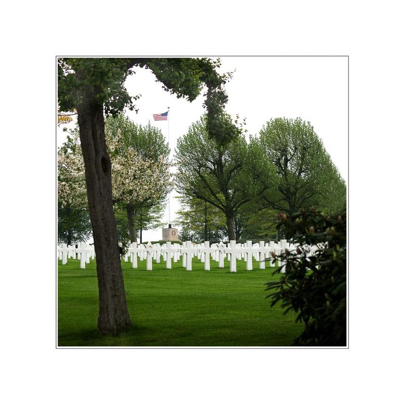 Bush will mehr Soldaten