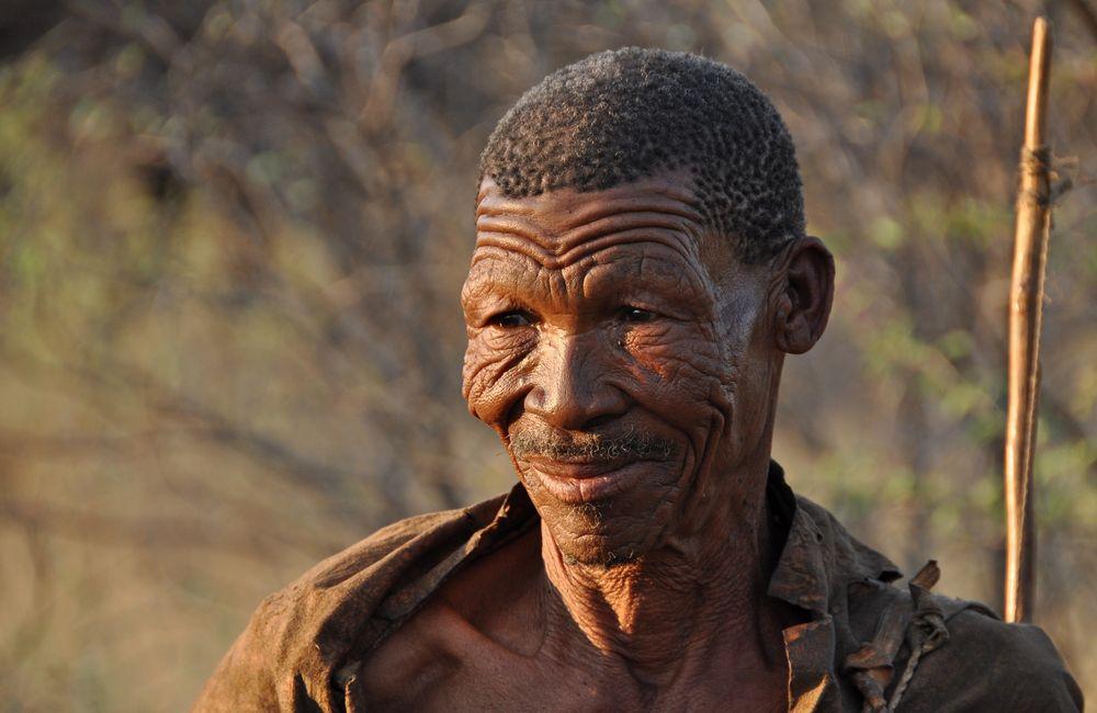 Bushman von bera-foto