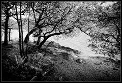 By Loch Lomond