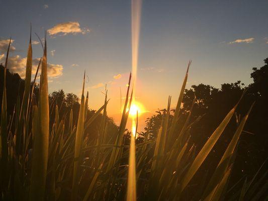 Byron bay's sunset