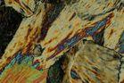 C22-Kristallisation aus der Schmelze im polarisierten Licht