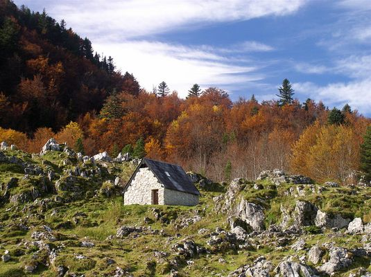 Cabane en Béarn