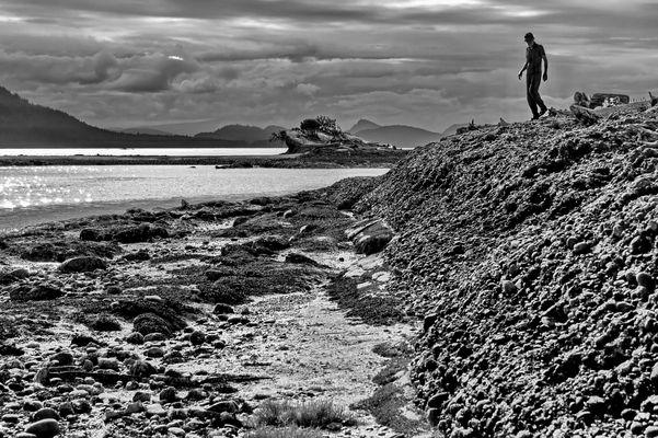 Cabbage Island Walk