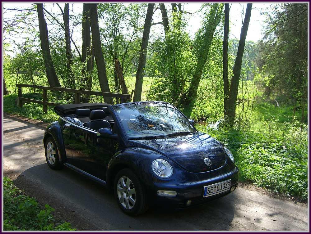 Cabrioletzeit im New Beetle durch den Forst