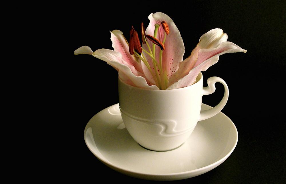 caffè con Lilia