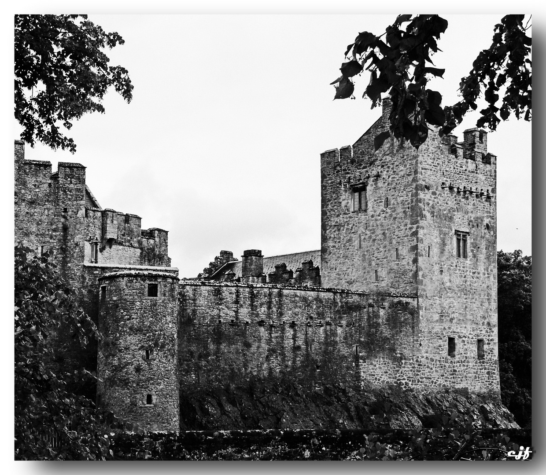 Cahir Castle sw