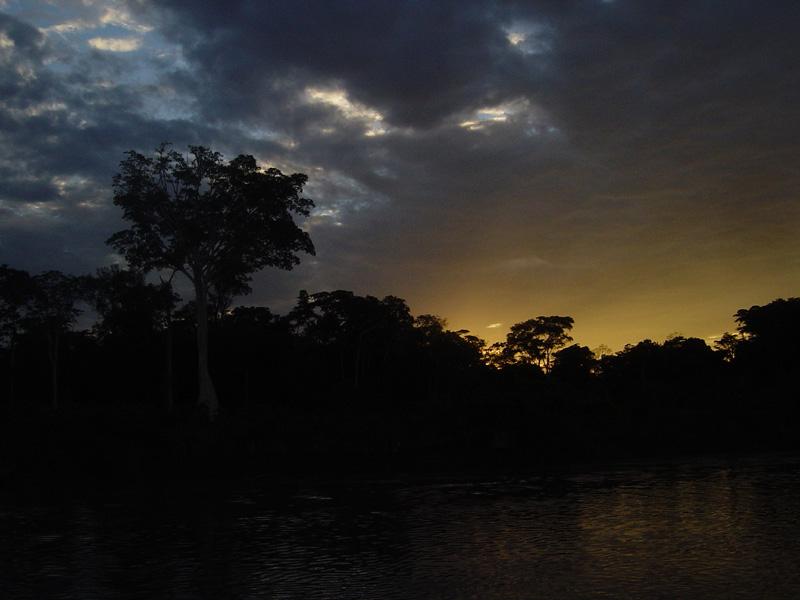 Caída de la Noche en el Amazonas